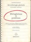 Mutagénèses et protéines